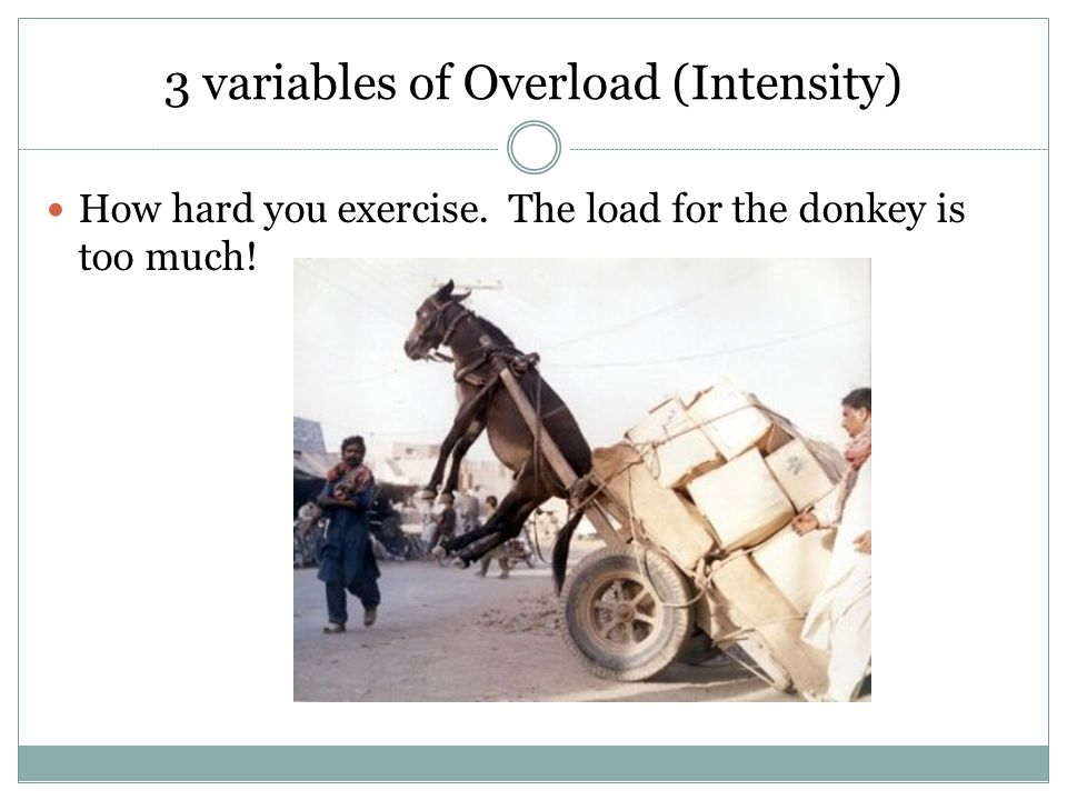 3 variables of Overload (Intensity) How hard you exercise. The load for the donkey is too much!