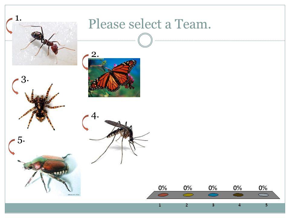 Please select a Team. 1. 2. 3. 4. 5.