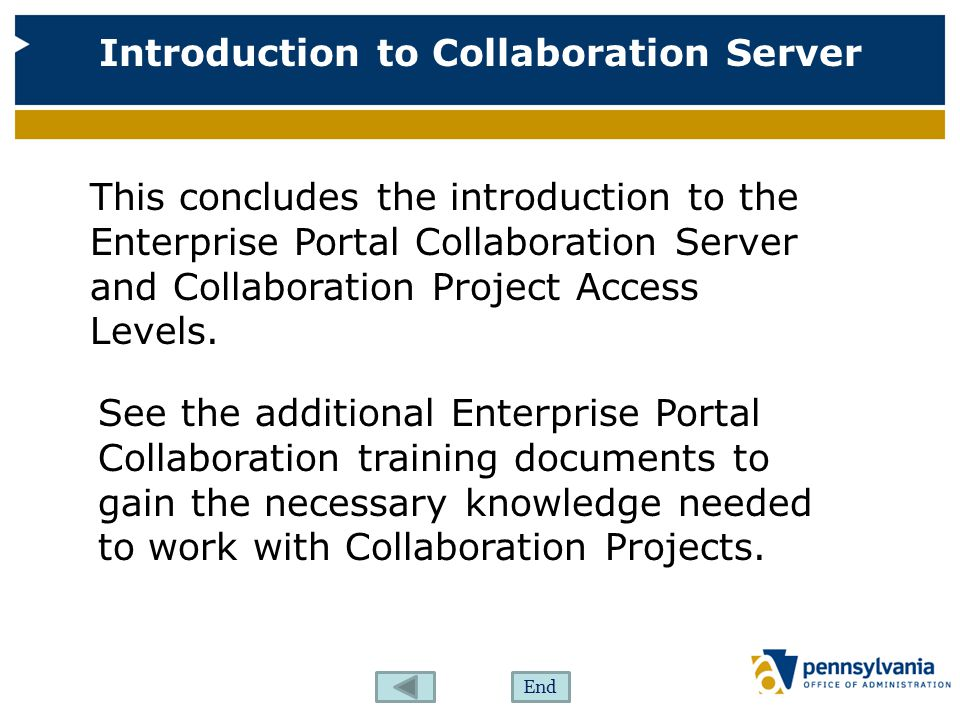This concludes the introduction to the Enterprise Portal Collaboration Server and Collaboration Project Access Levels.