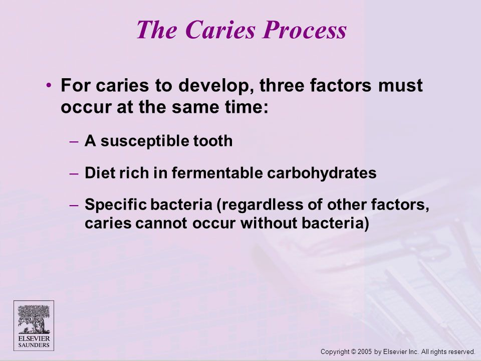 Copyright © 2005 by Elsevier Inc. All rights reserved. The Caries Process For caries to develop, three factors must occur at the same time: –A suscept