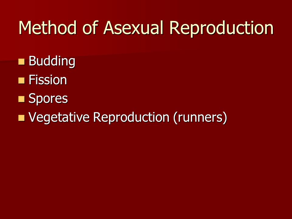 Method of Asexual Reproduction Budding Budding Fission Fission Spores Spores Vegetative Reproduction (runners) Vegetative Reproduction (runners)