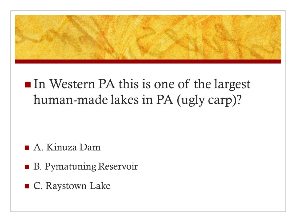 In Western PA this is one of the largest human-made lakes in PA (ugly carp).