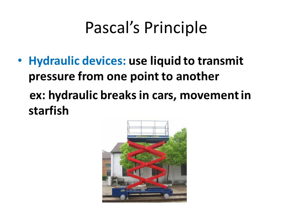 Pascal's Principle Hydraulic devices: use liquid to transmit pressure from one point to another ex: hydraulic breaks in cars, movement in starfish