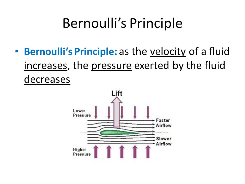 Bernoulli's Principle Bernoulli's Principle: as the velocity of a fluid increases, the pressure exerted by the fluid decreases