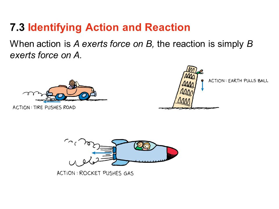 When action is A exerts force on B, the reaction is simply B exerts force on A. 7.3 Identifying Action and Reaction
