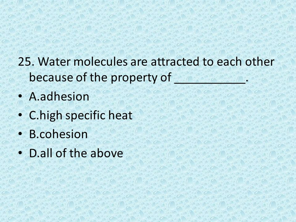 25. Water molecules are attracted to each other because of the property of ___________. A.adhesion C.high specific heat B.cohesion D.all of the above