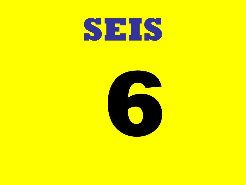 SEIS 6