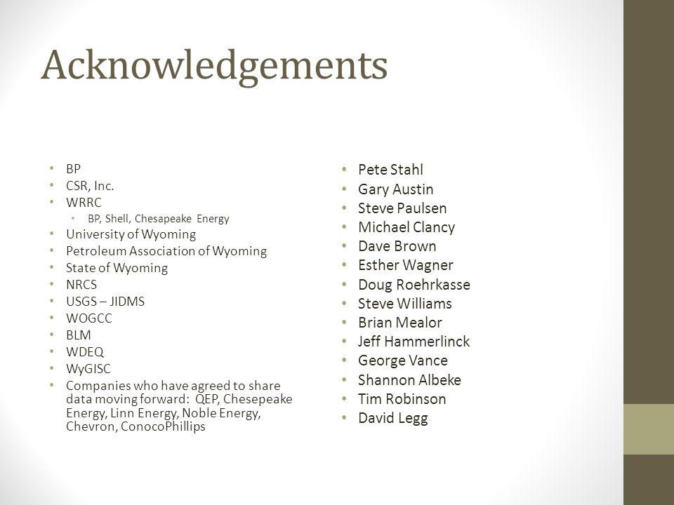 Acknowledgements BP CSR, Inc.
