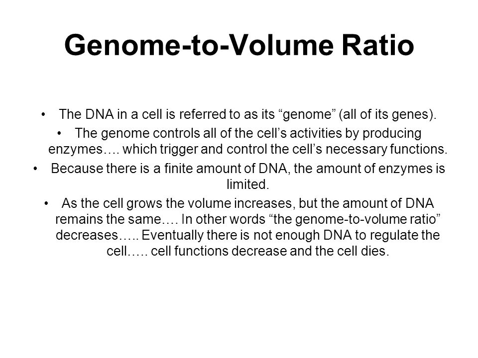 "Genome-to-Volume Ratio The DNA in a cell is referred to as its ""genome"" (all of its genes). The genome controls all of the cell's activities by produc"