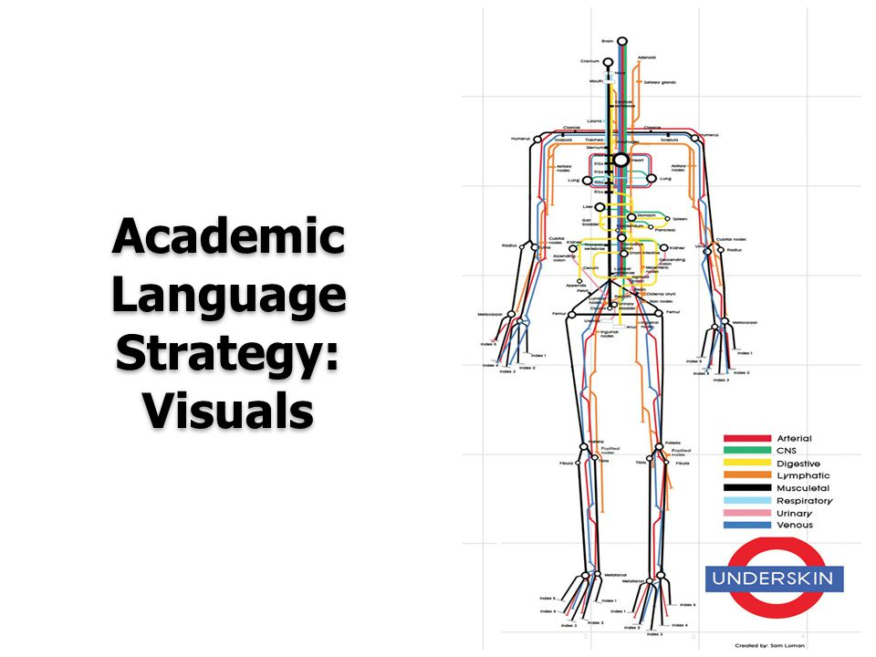 Academic Language Strategy: Visuals
