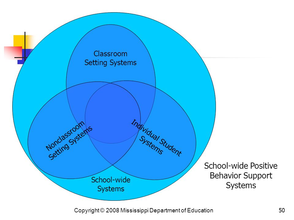 50 Nonclassroom Setting Systems Classroom Setting Systems Individual Student Systems School-wide Systems School-wide Positive Behavior Support Systems Copyright © 2008 Mississippi Department of Education