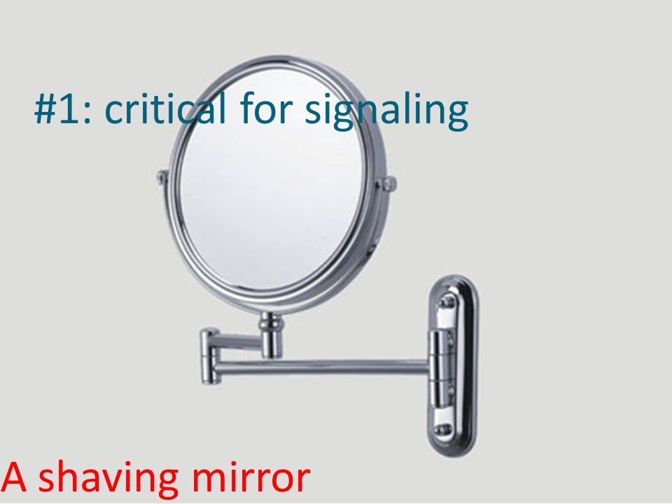 #1: critical for signaling A shaving mirror