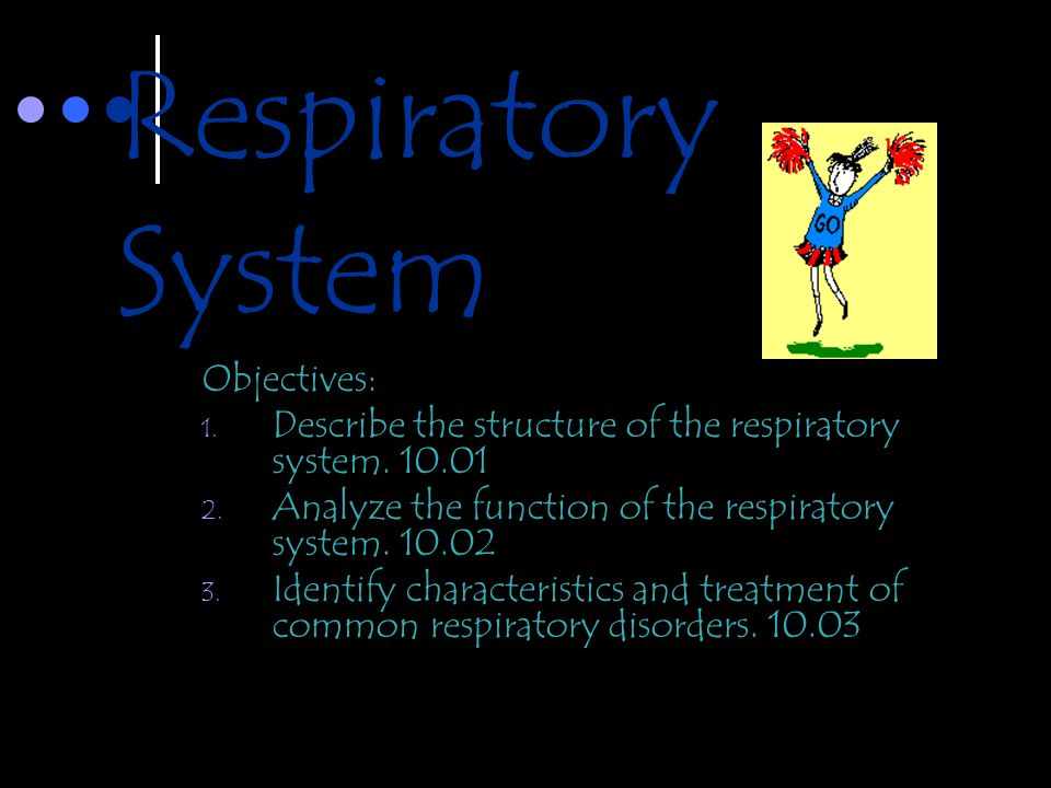 Respiratory System Objectives: 1. Describe the structure of the respiratory system. 10.01 2. Analyze the function of the respiratory system. 10.02 3.