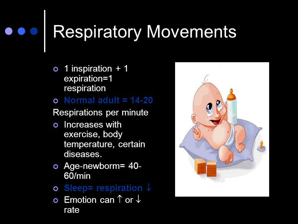 Respiratory Movements 1 inspiration + 1 expiration=1 respiration Normal adult = 14-20 Respirations per minute Increases with exercise, body temperatur
