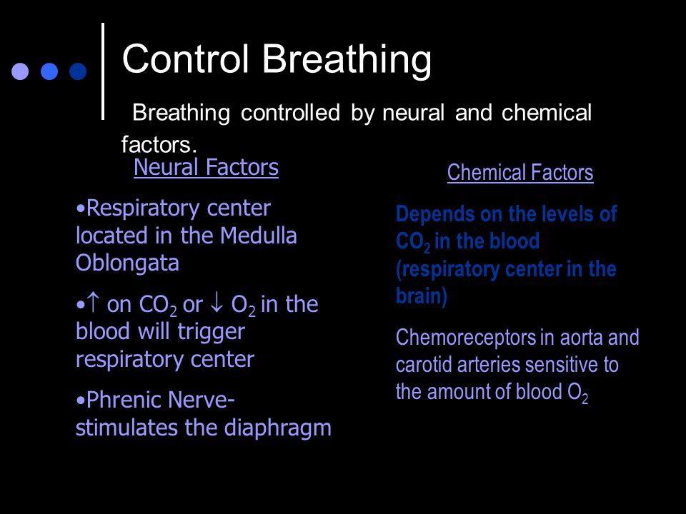 Control Breathing Breathing controlled by neural and chemical factors. Neural Factors Respiratory center located in the Medulla Oblongata  on CO 2 or