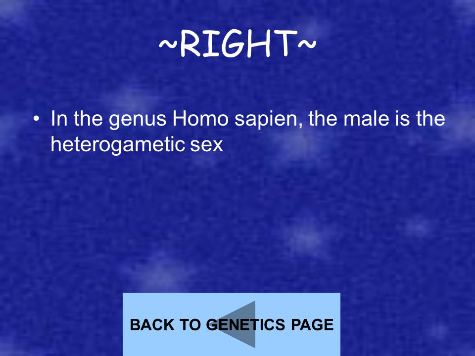 ~RIGHT~ In the genus Homo sapien, the male is the heterogametic sex BACK TO GENETICS PAGE