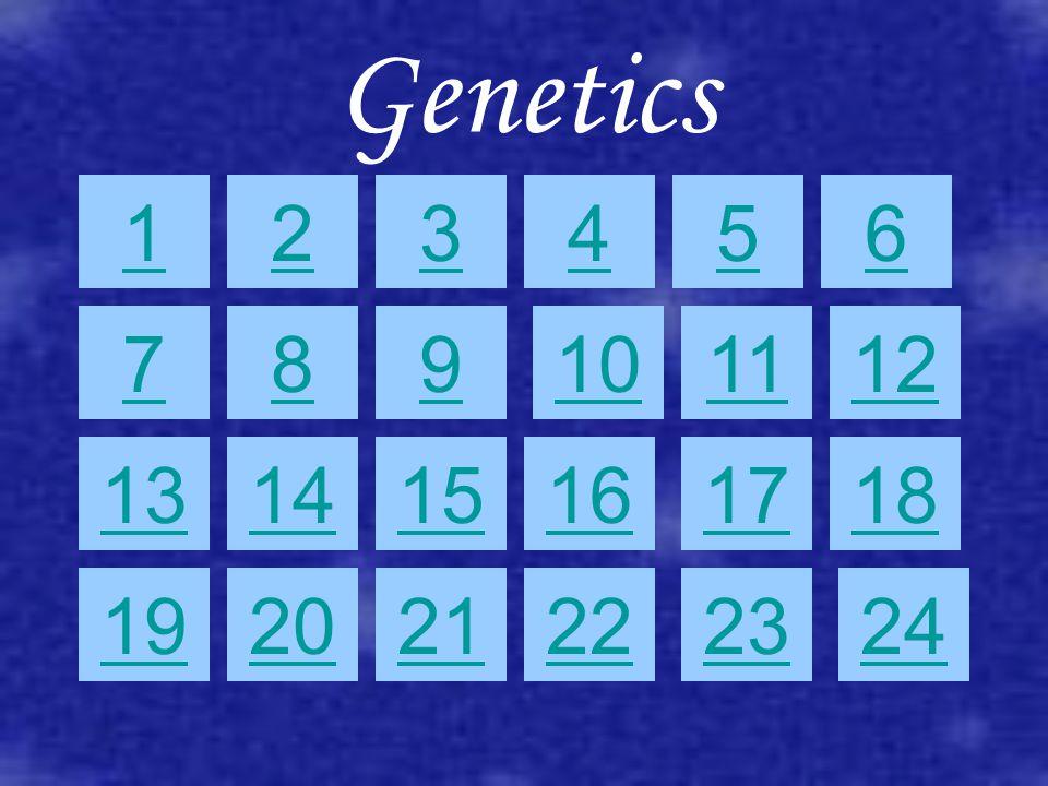 Genetics 10 612 117 3 128 45 9 131415161718 232221201924