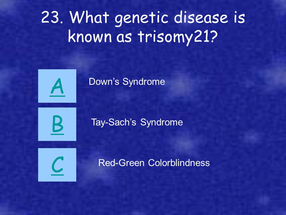23. What genetic disease is known as trisomy21? A B C Down's Syndrome Tay-Sach's Syndrome Red-Green Colorblindness