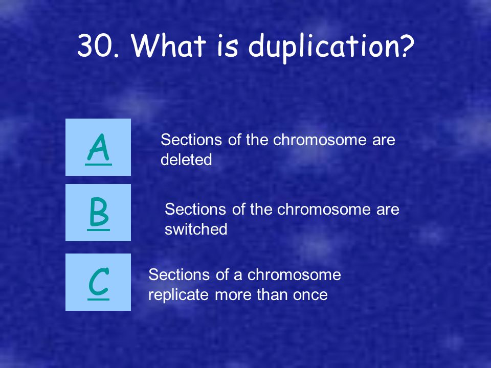 30. What is duplication? A B C Sections of a chromosome replicate more than once Sections of the chromosome are deleted Sections of the chromosome are
