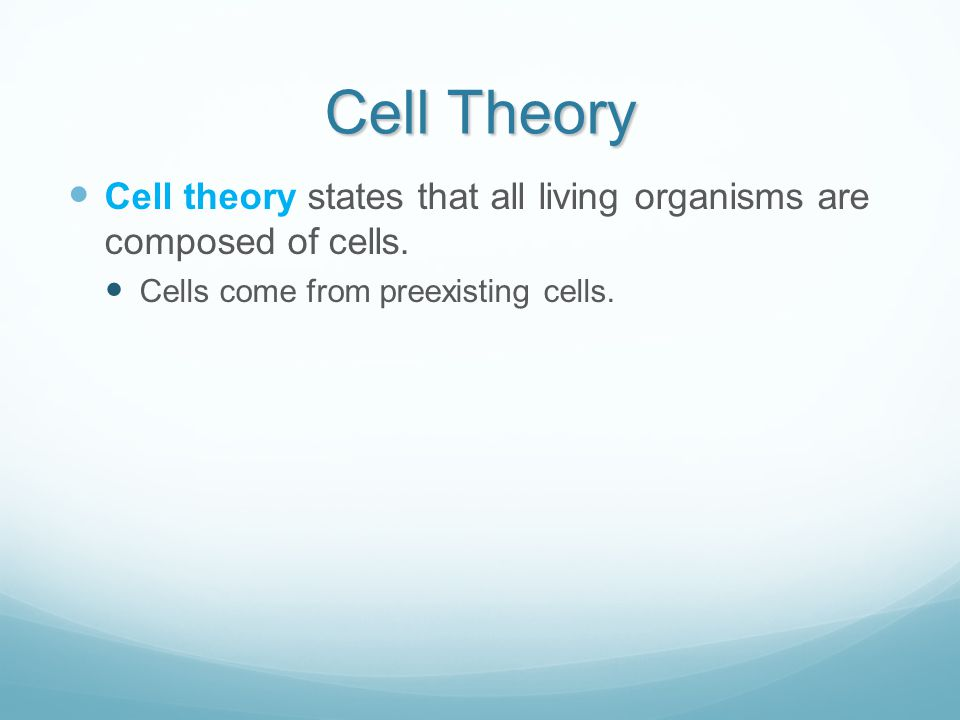 Cell Division Telophase – re- formation of the nuclei once the chromosomes are at opposite poles.