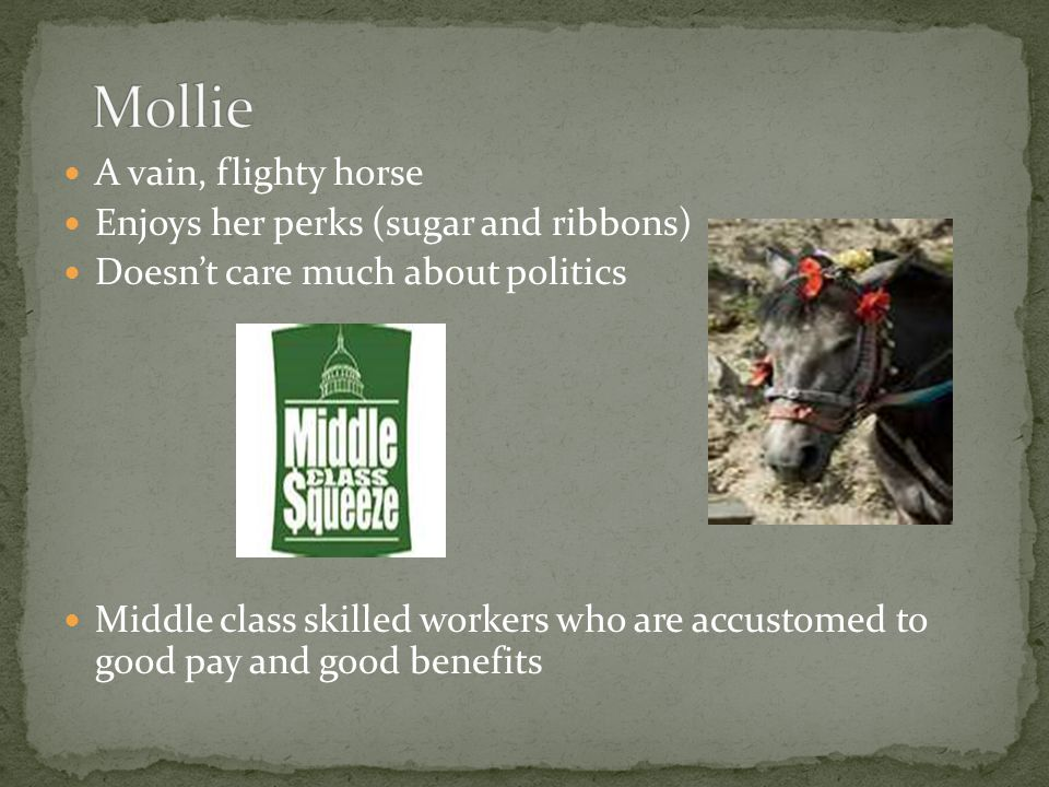 A vain, flighty horse Enjoys her perks (sugar and ribbons) Doesn't care much about politics Middle class skilled workers who are accustomed to good pa