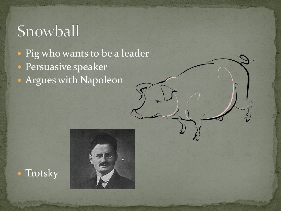 Pig who wants to be a leader Persuasive speaker Argues with Napoleon Trotsky