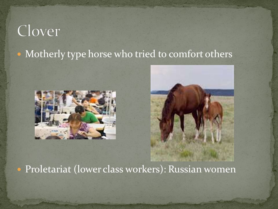 Motherly type horse who tried to comfort others Proletariat (lower class workers): Russian women