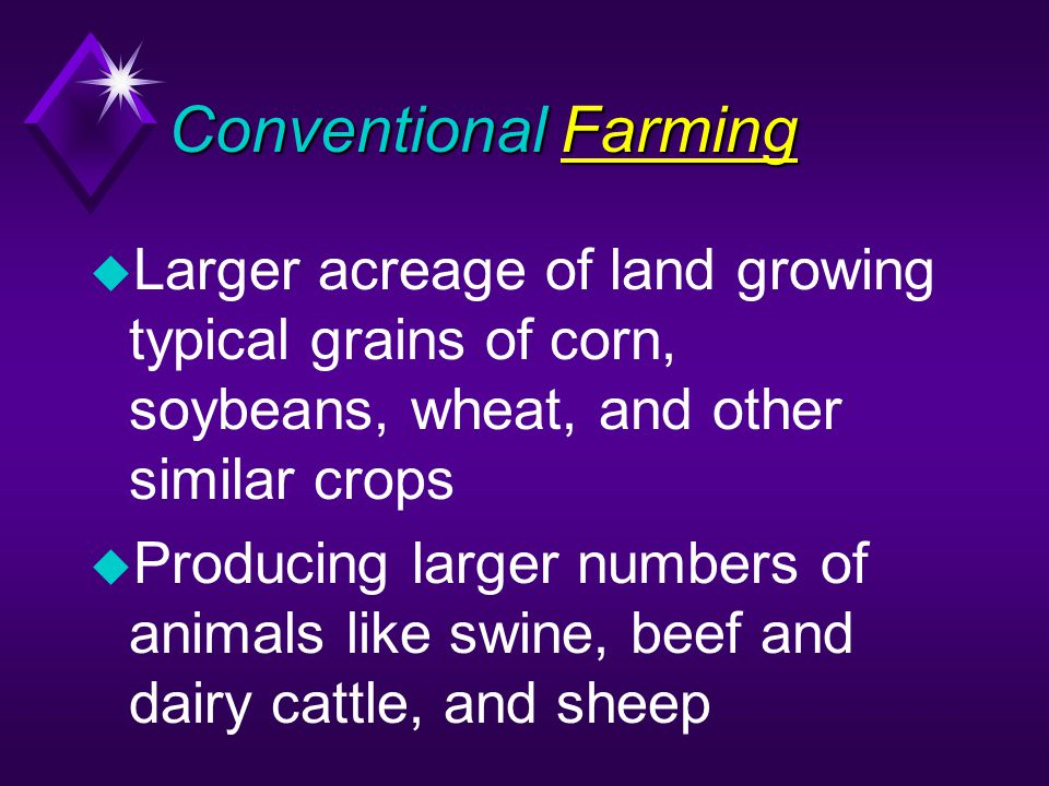 Conventional Farming u Larger acreage of land growing typical grains of corn, soybeans, wheat, and other similar crops u Producing larger numbers of animals like swine, beef and dairy cattle, and sheep