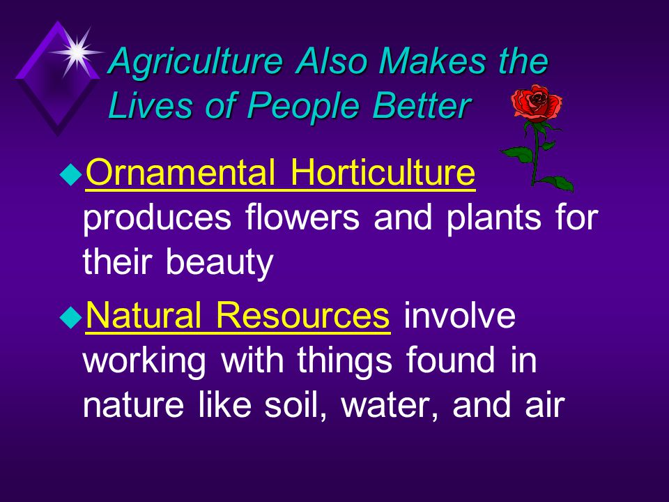 Agriculture Also Makes the Lives of People Better u Ornamental Horticulture produces flowers and plants for their beauty u Natural Resources involve working with things found in nature like soil, water, and air