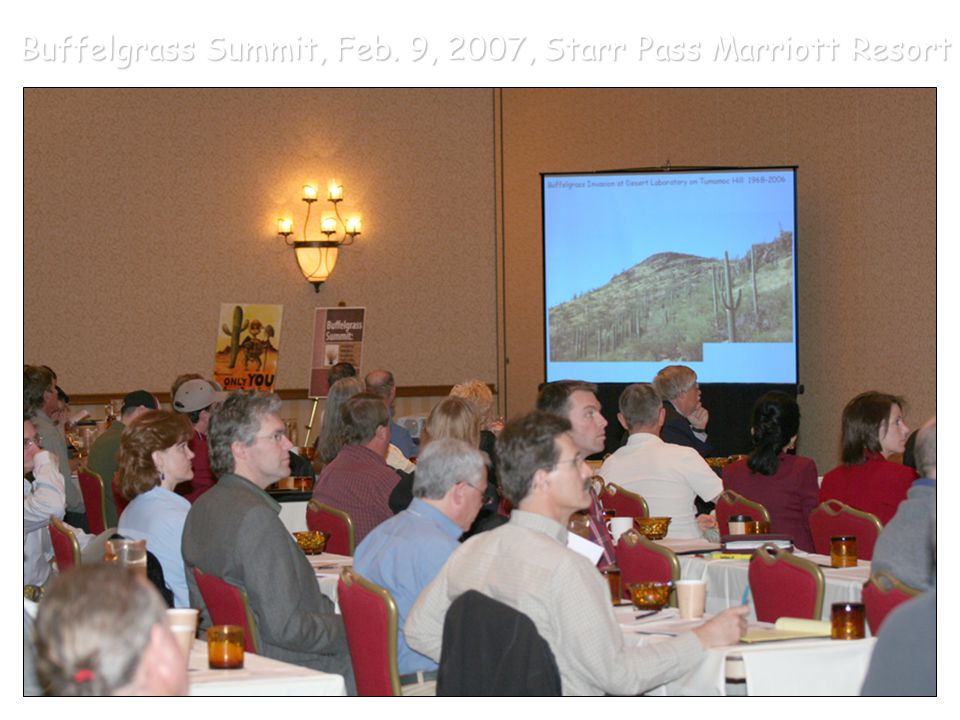 Buffelgrass Summit, Feb. 9, 2007, Starr Pass Marriott Resort