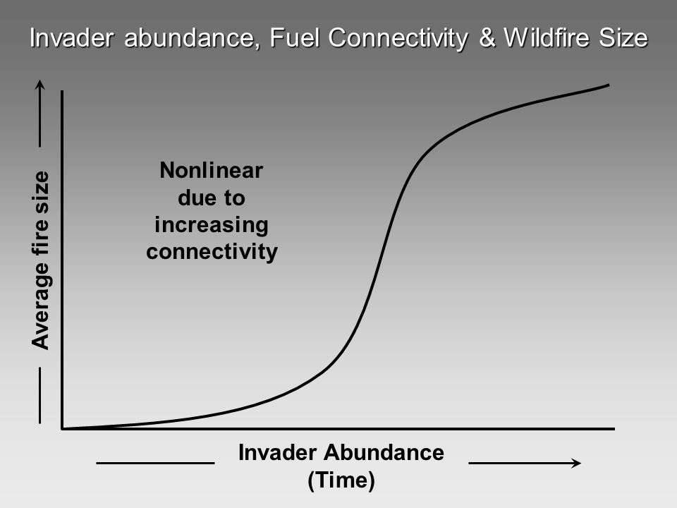Invader abundance, Fuel Connectivity & Wildfire Size Average fire size Invader Abundance (Time) Nonlinear due to increasing connectivity