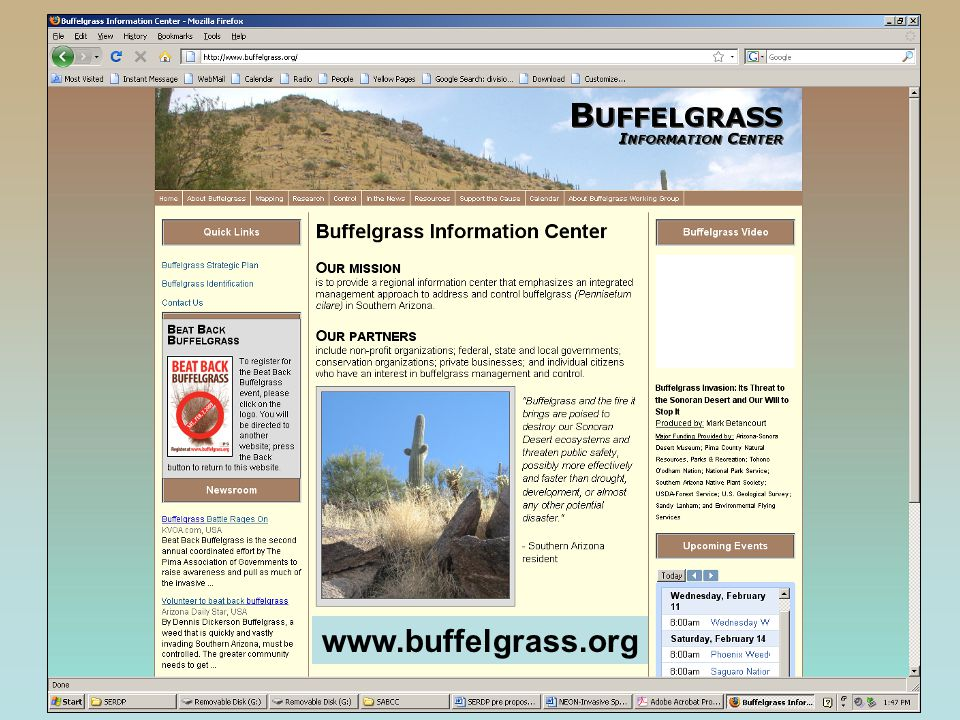 www.buffelgrass.org