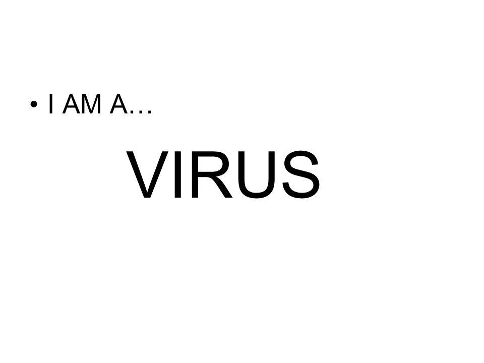 I AM A… VIRUS