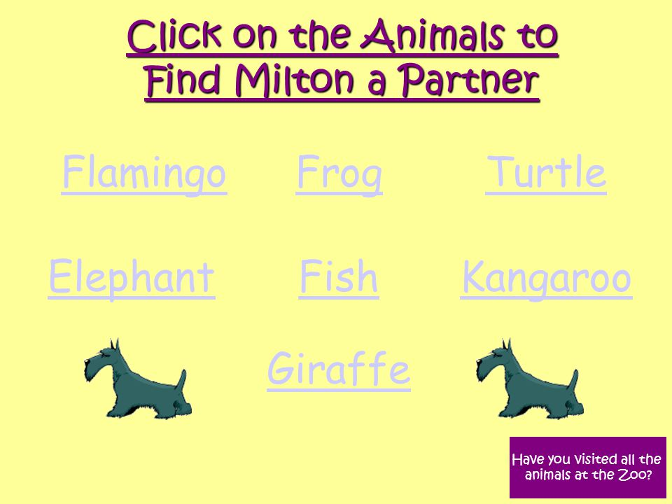 Flamingo FrogTurtle ElephantFishKangaroo Giraffe Click on the Animals to Find Milton a Partner Have you visited all the animals at the Zoo?