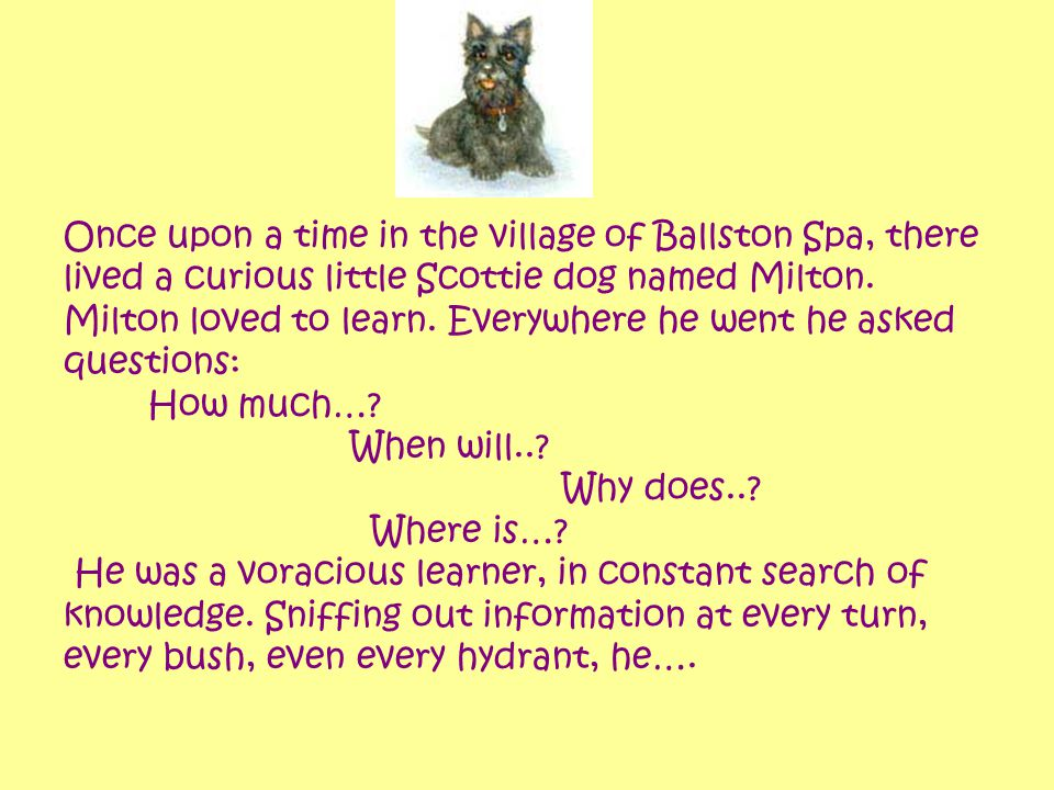 Once upon a time in the village of Ballston Spa, there lived a curious little Scottie dog named Milton. Milton loved to learn. Everywhere he went he a