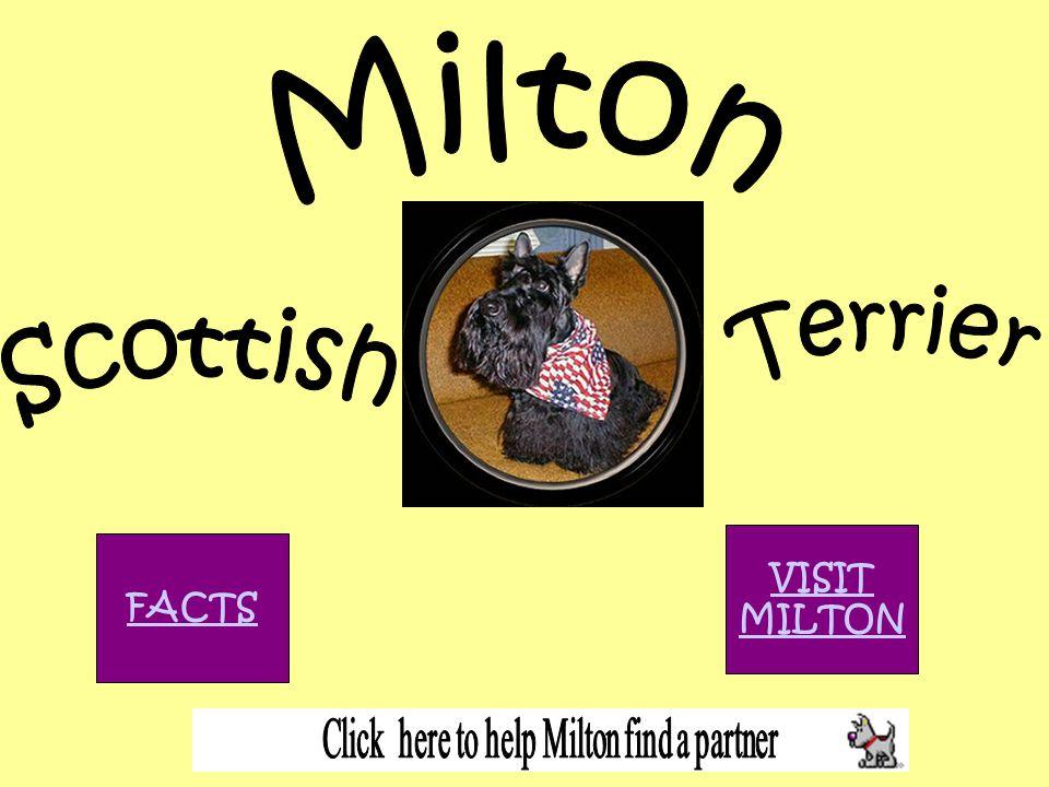 VISIT MILTON FACTS
