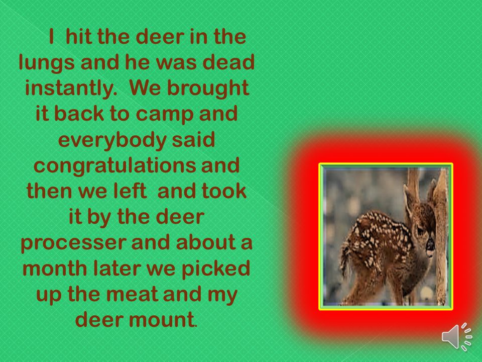 I hit the deer in the lungs and he was dead instantly.