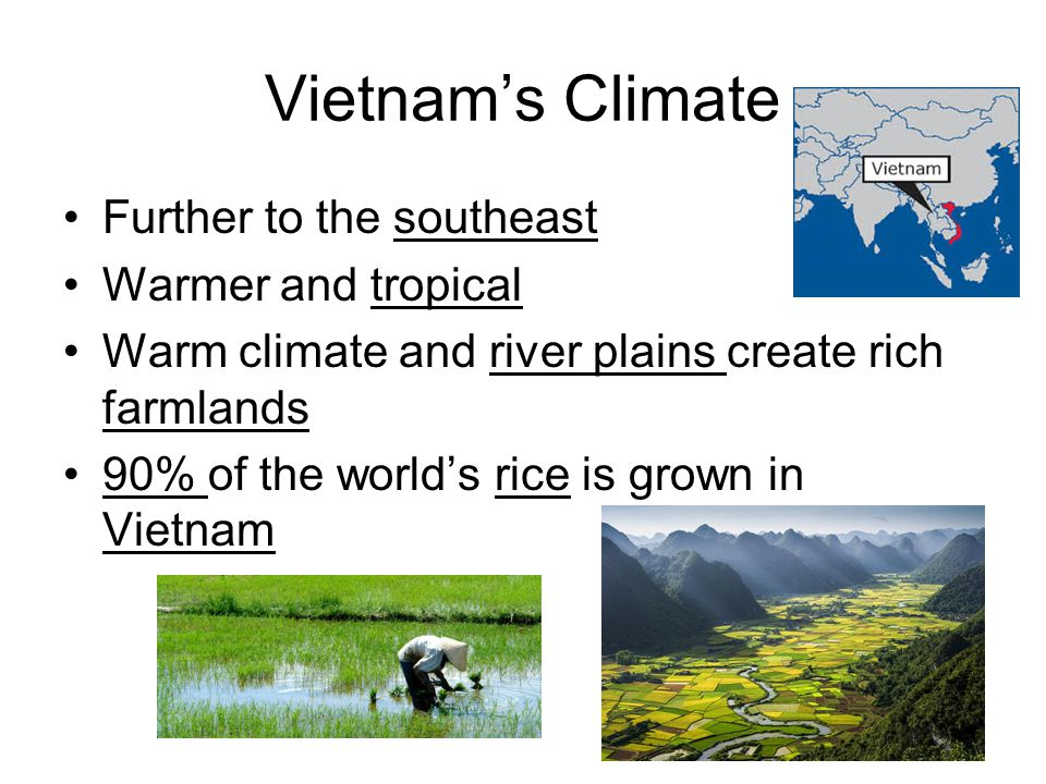 Vietnam's Climate Further to the southeast Warmer and tropical Warm climate and river plains create rich farmlands 90% of the world's rice is grown in