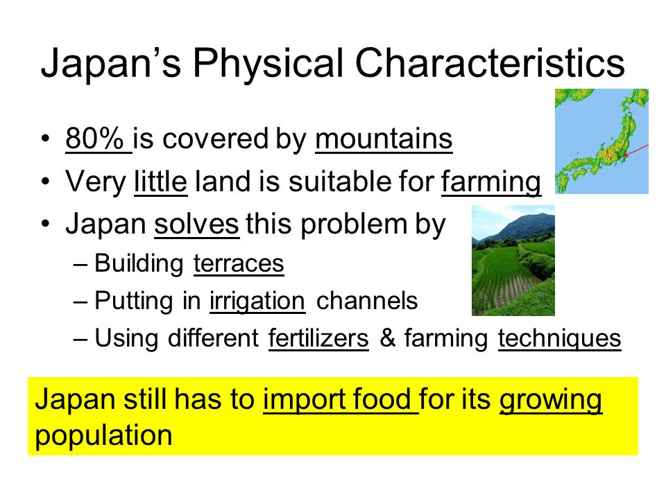 Japan's Physical Characteristics 80% is covered by mountains Very little land is suitable for farming Japan solves this problem by –Building terraces