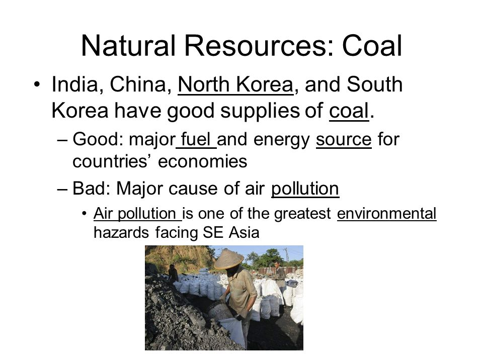 Natural Resources: Coal India, China, North Korea, and South Korea have good supplies of coal. –Good: major fuel and energy source for countries' econ