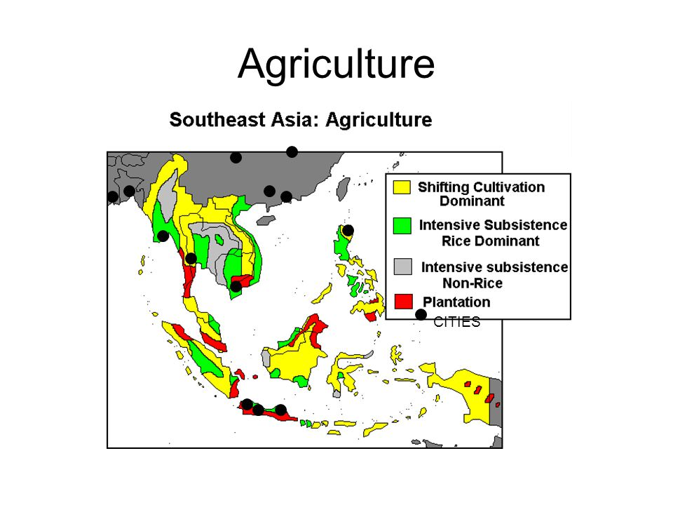 Agriculture CITIES