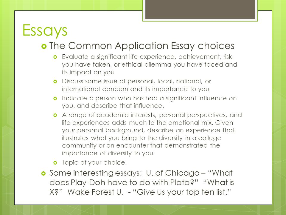 Essays  The Common Application Essay choices  Evaluate a significant life experience, achievement, risk you have taken, or ethical dilemma you have faced and its impact on you  Discuss some issue of personal, local, national, or international concern and its importance to you  Indicate a person who has had a significant influence on you, and describe that influence.