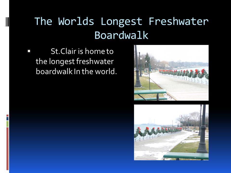The Worlds Longest Freshwater Boardwalk  St.Clair is home to the longest freshwater boardwalk In the world.