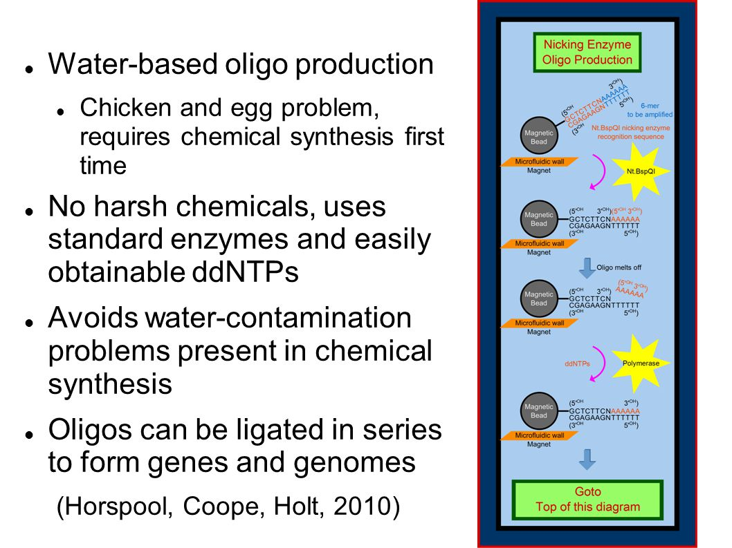 Water-based oligo production Chicken and egg problem, requires chemical synthesis first time No harsh chemicals, uses standard enzymes and easily obtainable ddNTPs Avoids water-contamination problems present in chemical synthesis Oligos can be ligated in series to form genes and genomes (Horspool, Coope, Holt, 2010)