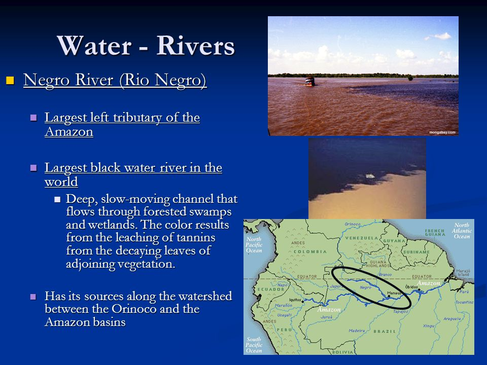 Water - Rivers Negro River (Rio Negro) Negro River (Rio Negro) Largest left tributary of the Amazon Largest left tributary of the Amazon Largest black water river in the world Largest black water river in the world Deep, slow-moving channel that flows through forested swamps and wetlands.