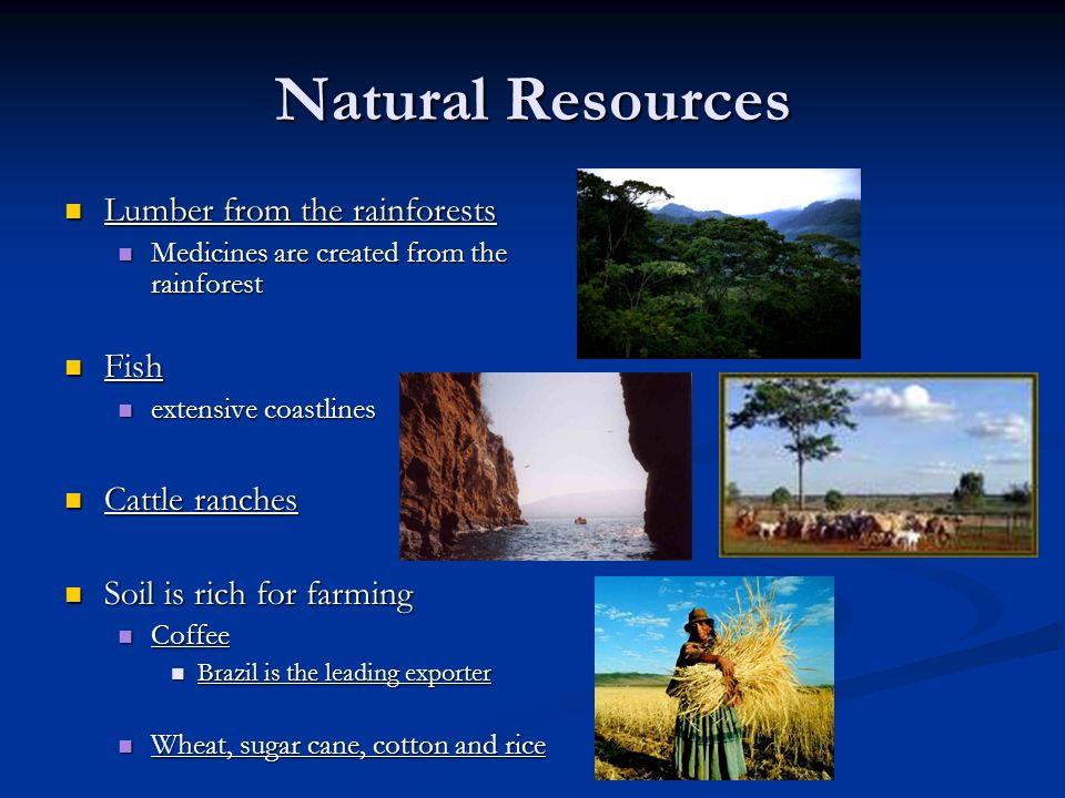 Natural Resources Lumber from the rainforests Lumber from the rainforests Medicines are created from the rainforest Medicines are created from the rainforest Fish Fish extensive coastlines extensive coastlines Cattle ranches Cattle ranches Soil is rich for farming Soil is rich for farming Coffee Coffee Brazil is the leading exporter Brazil is the leading exporter Wheat, sugar cane, cotton and rice Wheat, sugar cane, cotton and rice