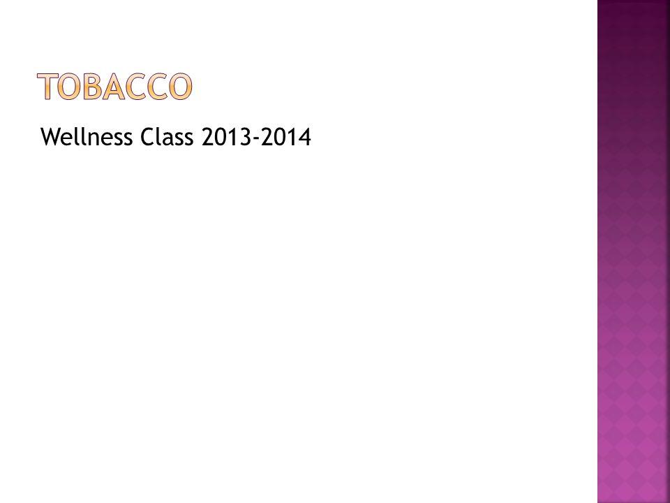Wellness Class 2013-2014