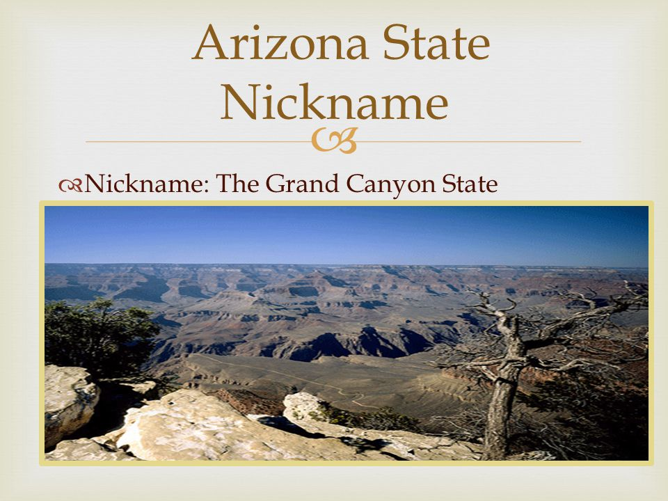   Nickname: The Grand Canyon State Arizona State Nickname