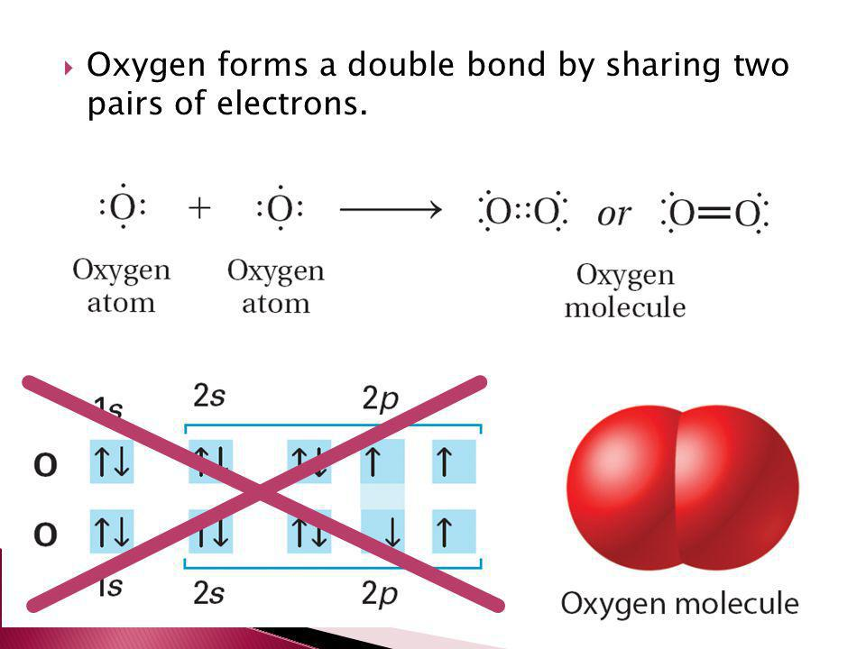  Oxygen forms a double bond by sharing two pairs of electrons.