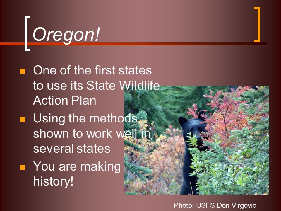 Oregon! One of the first states to use its State Wildlife Action Plan Using the methods shown to work well in several states You are making history! P